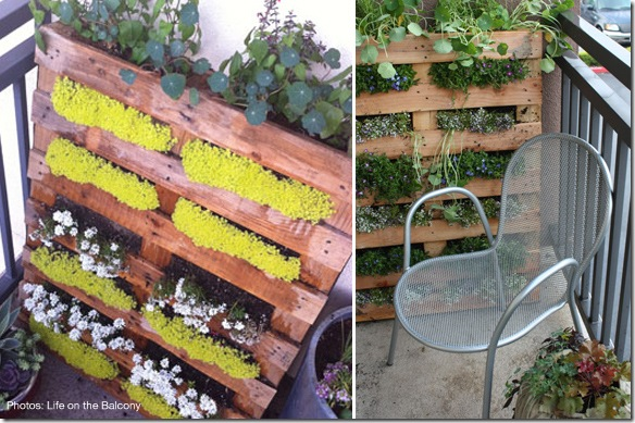 Ideas and Inspiration for a Modern Vegetable Garden | Potted Plant ...