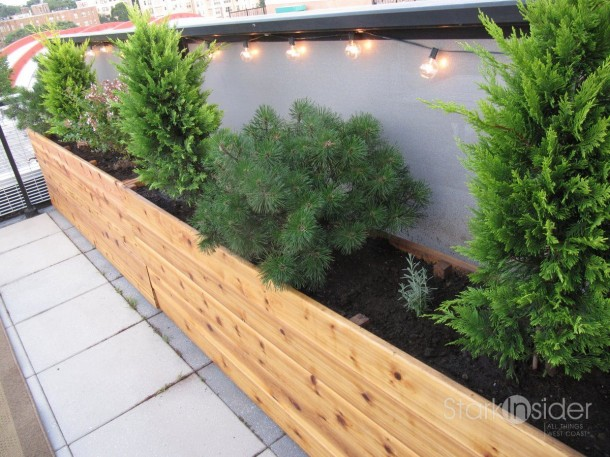 Tree Planter Box Plans Free Flower Planter Box Plans
