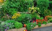 Mix edibles with ornamentals